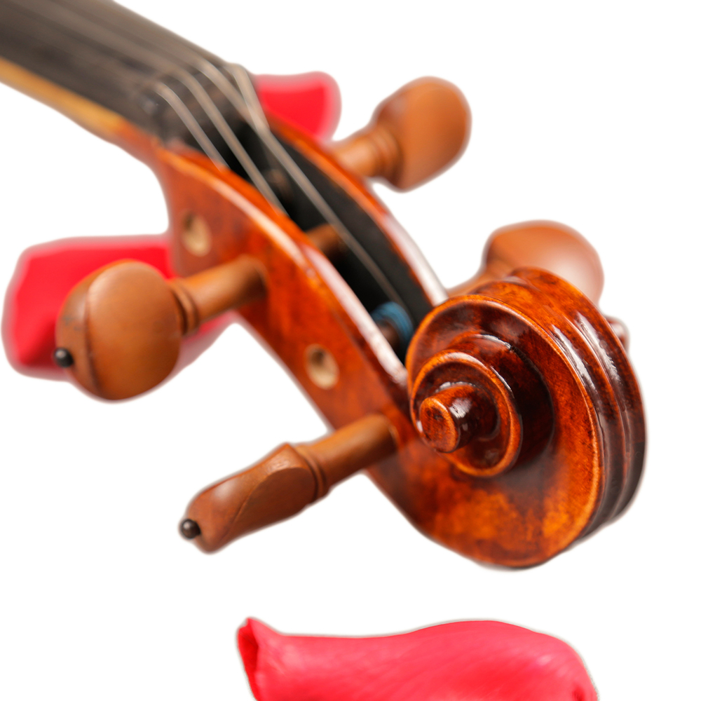 Скрипки Профессиональный Струнные инструменты скрипка 4/4 натуральный полосы клен violon мастер ручной craft Violino с Case bow Розин