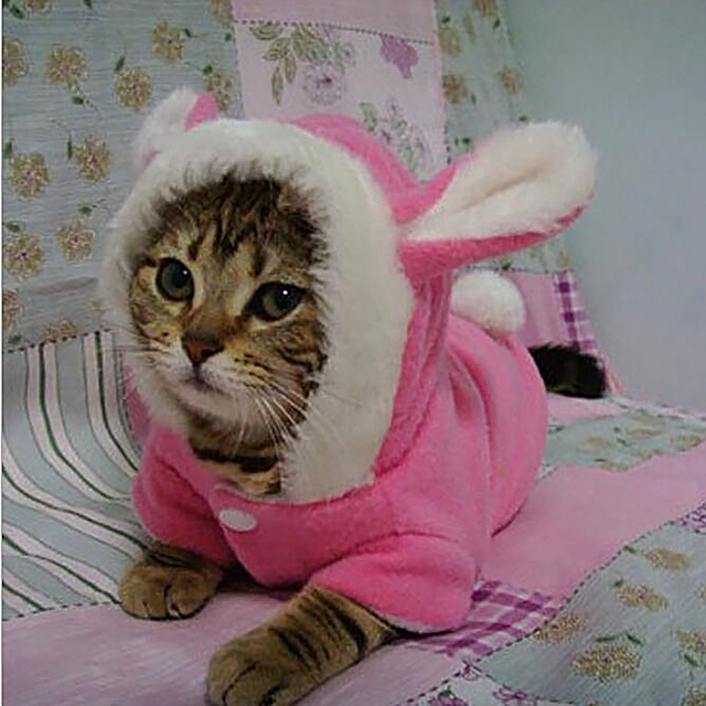 Hot Easter Bunny Puppy Dog Costume Pet Clothes Warm Hoodie Coat Rabbit Dressing up Clothes for & Hot Easter Bunny Puppy Dog Costume Pet Clothes Warm Hoodie Coat ...