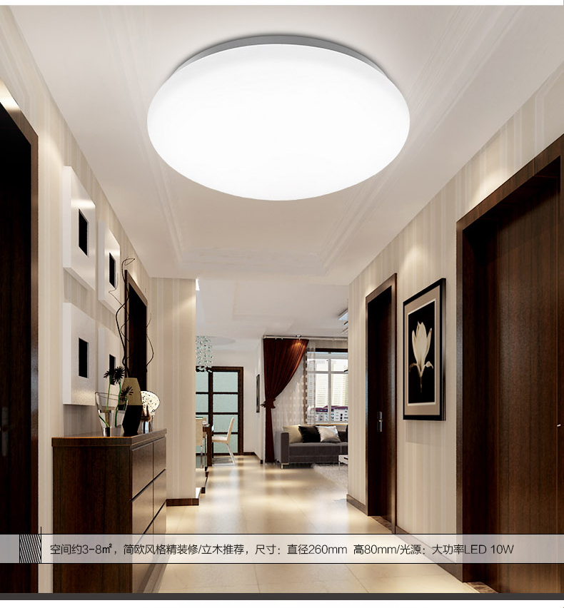220V 10W LED Ceiling light Acrylic Round Kitchen Light Modern Lamp