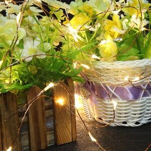 Image 5 - Filo di rame LED Luci Della Stringa 10m 20m 30m 50m LED per Esterni Luci Leggiadramente di Natale Bianco Caldo stellata Luce + Adattatore