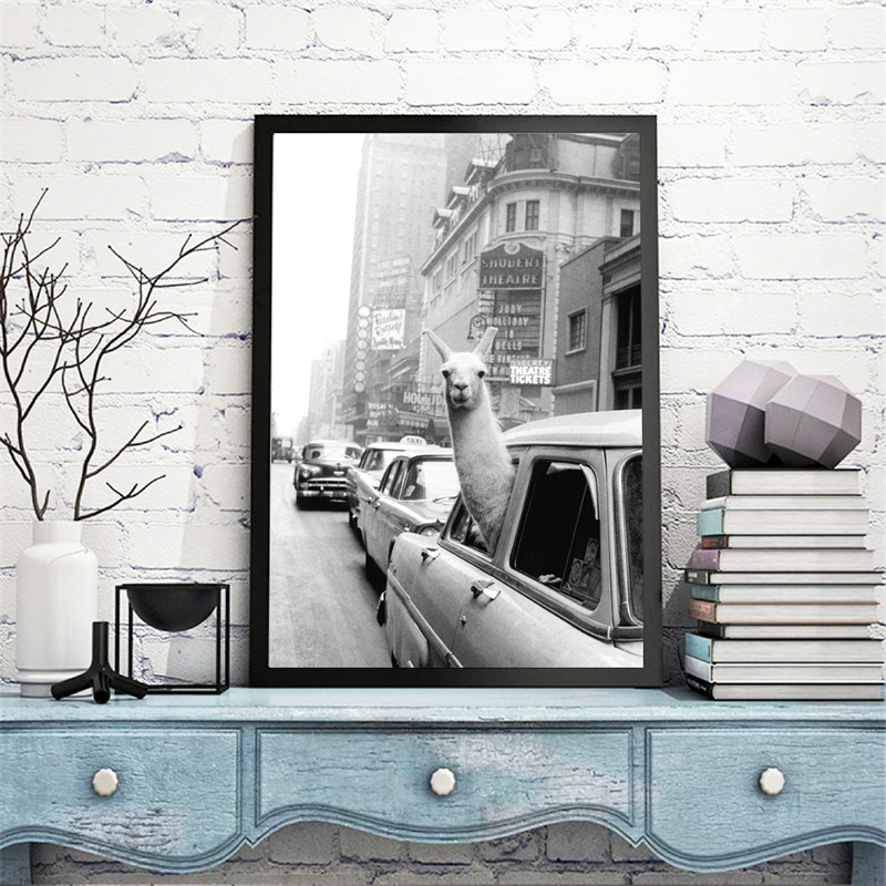 Llama in a taxi on Times Square Canvas Print and Poster Vintage llama Print New York City Photo Picture Wall Art Home Decor