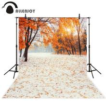 Allenjoy photography background autumn golden tree trail beautiful forest sunshine for photo studio shoots