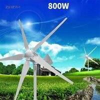 5 blades wind power generator Permanent magnet three phase alternator AC 12V/24V/48V 800W low start up wind speed Z 800