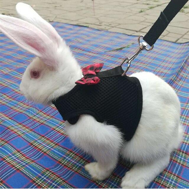 Новый черный кролик поводок жилет Малый Животные сетки хлопка воротники Кошка Хомяк красный жгуты размеры S, M, l жгут Поводок Pet ремень  поводок для кроликов товары для животных хомяки ошейник кролик мотоблок поводок