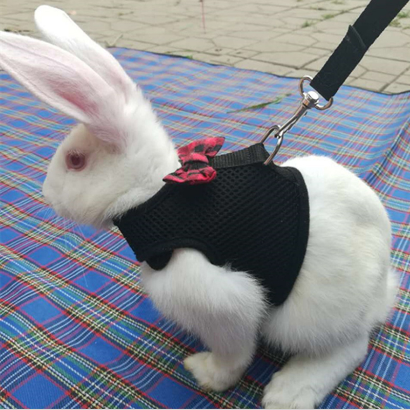 New Black Rabbit Leash Lead Vest Small Animals Mesh Cotton Collars Cat Hamster Red Harnesses S M L Harness Leash Pet Strap