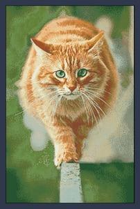 Image 1 - FREE Shipping Top Quality popular counted cross stitch set cat walk athlete model yellow kitty kitten