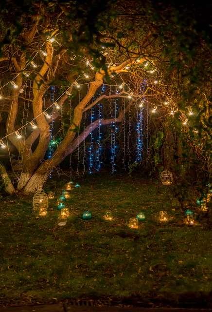 8x12ft Night Time Garden Tree Branch Bulbs Stripes Lantern