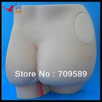 Budget Buttocks Intramuscular Injection Simulator