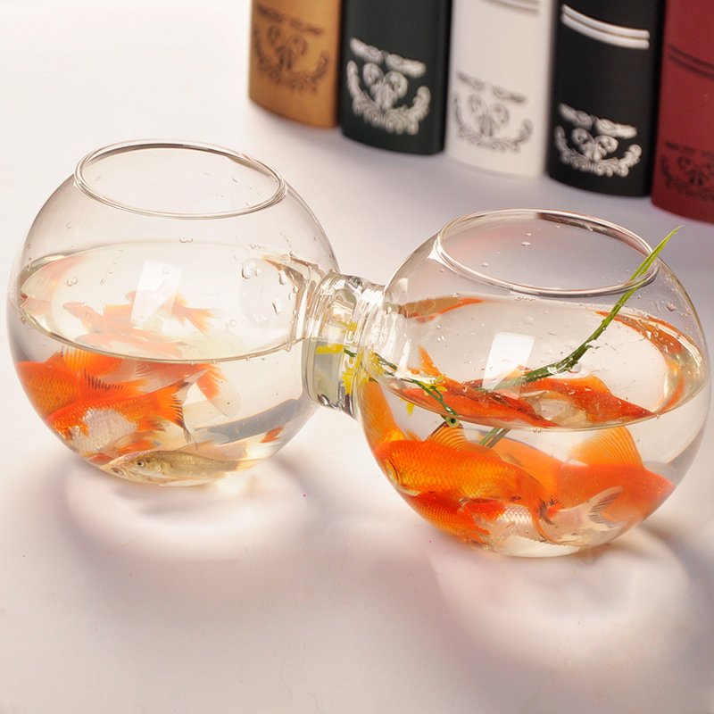 Connected glass fish bowl and flower vase ornamental for Glass fish bowls