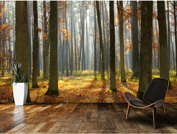 Buy custom natural wallpaper autumn for Autumn forest wallpaper mural