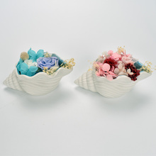 The Suprise Gift For Girlfriend Ocean Ceramic conch Preserved Fresh Rose Flower Decoration Wedding Valentines Day Decor