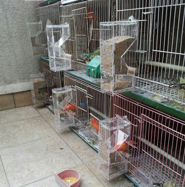 Tidy Seed No Mess Bird Feeder Parrot Food Feeding Bowl