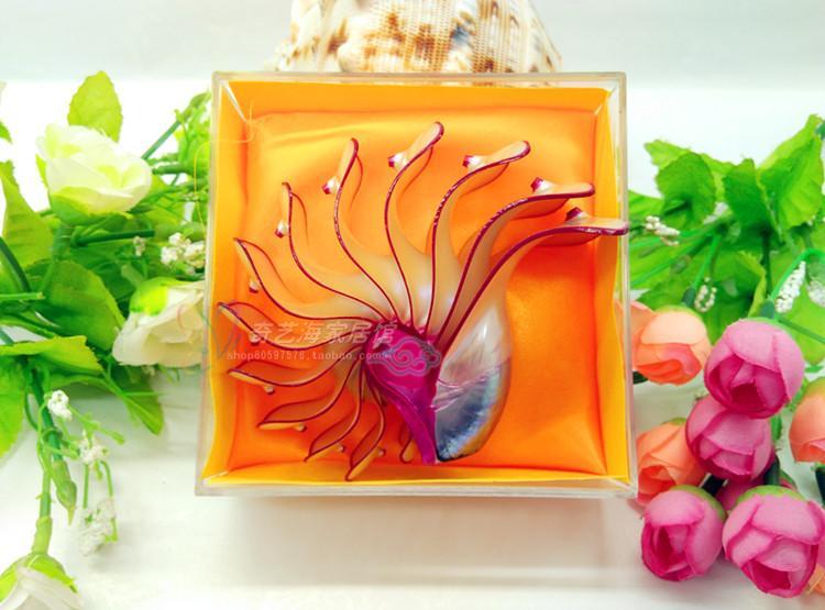 Style méditerranéen coquille artisanat cadeau bricolage Vintage mode plage mer Roses Nautilus naturel coquille artisanat coquille artisanat décoration