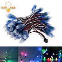 WS2811 RGB LED Module IP68 Waterproof DC12V Full Color LED Pixel Module String Point Lights 50pcs