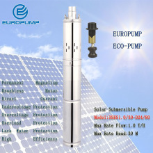 купить best irrigation screw water pump, Model(3SES1.0/30-D24/80) DC24V 1000L/H stainless steel pump,dc solar submersible pump for sale в интернет-магазине