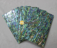 140 240mm 1 5mm Thick Top Grade Thicker Abalone Shell Paua Shell Laminate Sheets Shell Paper