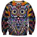 New Fashion Psychedelic Radiant Owl 3D Sweatshirt Religion Indian Style Crewneck Hoodies Pullovers Women/Men Casual Outerwear