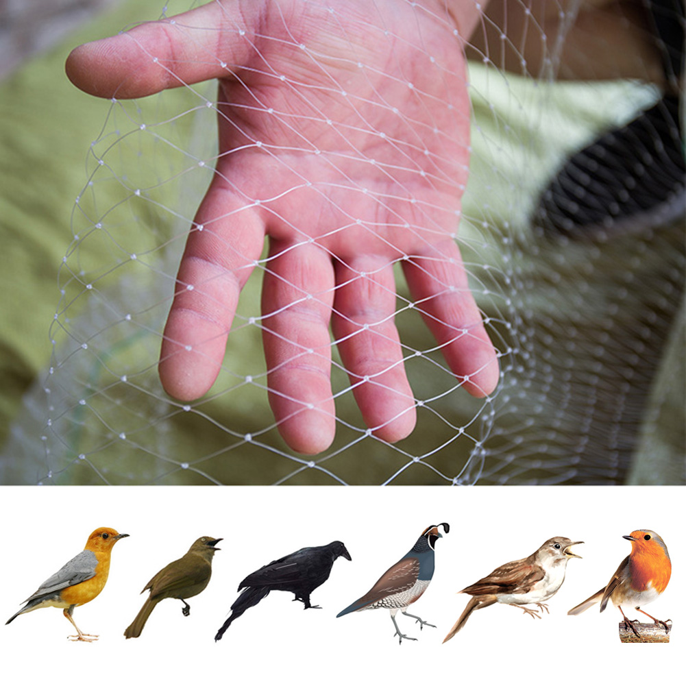 Safety Anti Bird Net Plastic Pond Fruit Tree Vegetable Netting Protection Crops Protect Garden Mesh Pest Control Catch Bird Trap
