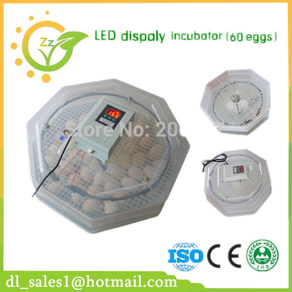 CE Approved Family Using Small Egg Incubator China Made Chicken Incubators For Sale eu au ce approved 2015 hot sale jn10 mini egg incubator with high quality