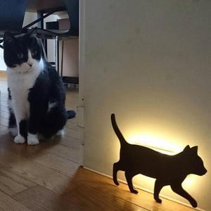 Image 2 - חדש LED Motion חיישן חכם שליטת קול/אור אוטומטי חם לבן לילה אור בית מסדרון מרפסת תינוק ילדים חמוד חתול שינה מנורה
