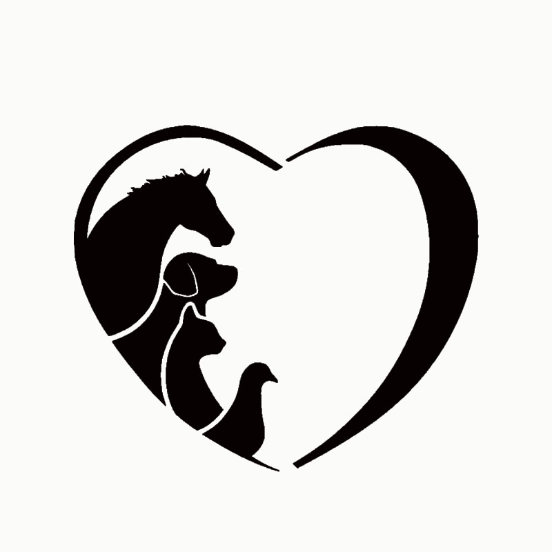 HotMeiNi 2 x (one For Each Side) Animal Lover Love Heart Sticker Horse Cat Dog For Car Side Truck Door Home Wall Vinyl Decal