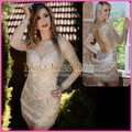 New Arrival Long Sleeve See Through Sweetheart Fully Crystal Beaded Sheath Mini Red Carpet Celebrity Dress 2017 Prom Party Gown