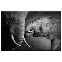 5D Diy Diamond Painting Cross Stitch Crystal Embroidery Black and white elephant baby photo Handicraft decorations