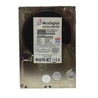 MaxDigital MD3000GB Enterprise Level Supervisory Control Hard Disk Warranty For 1 Years