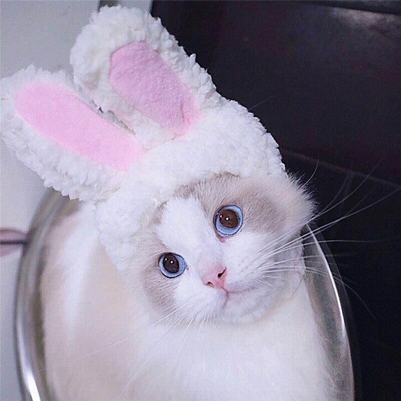 Orelhas de coelho para animais, chapéu para orelha de coelho para cachorros  e gatos pequenos, acessório para festa, 2020 gota portátil #0711,|Bonés p/  cães| - AliExpress