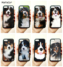 Bernese mountain dog soft silicone edge mobile phone cases for apple iPhone x 5s SE 6 6s plus 7 7plus 8 8plus XR XS MAX case