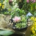 Европейский художественный стеклянный геометрический Сочный Террариум Зеленый папоротник мох широкий рот подвесной Террариум для растен...