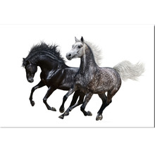 Horse DIY 5D diamond painting aniaml horse embroidery running full round mosaic diamonds