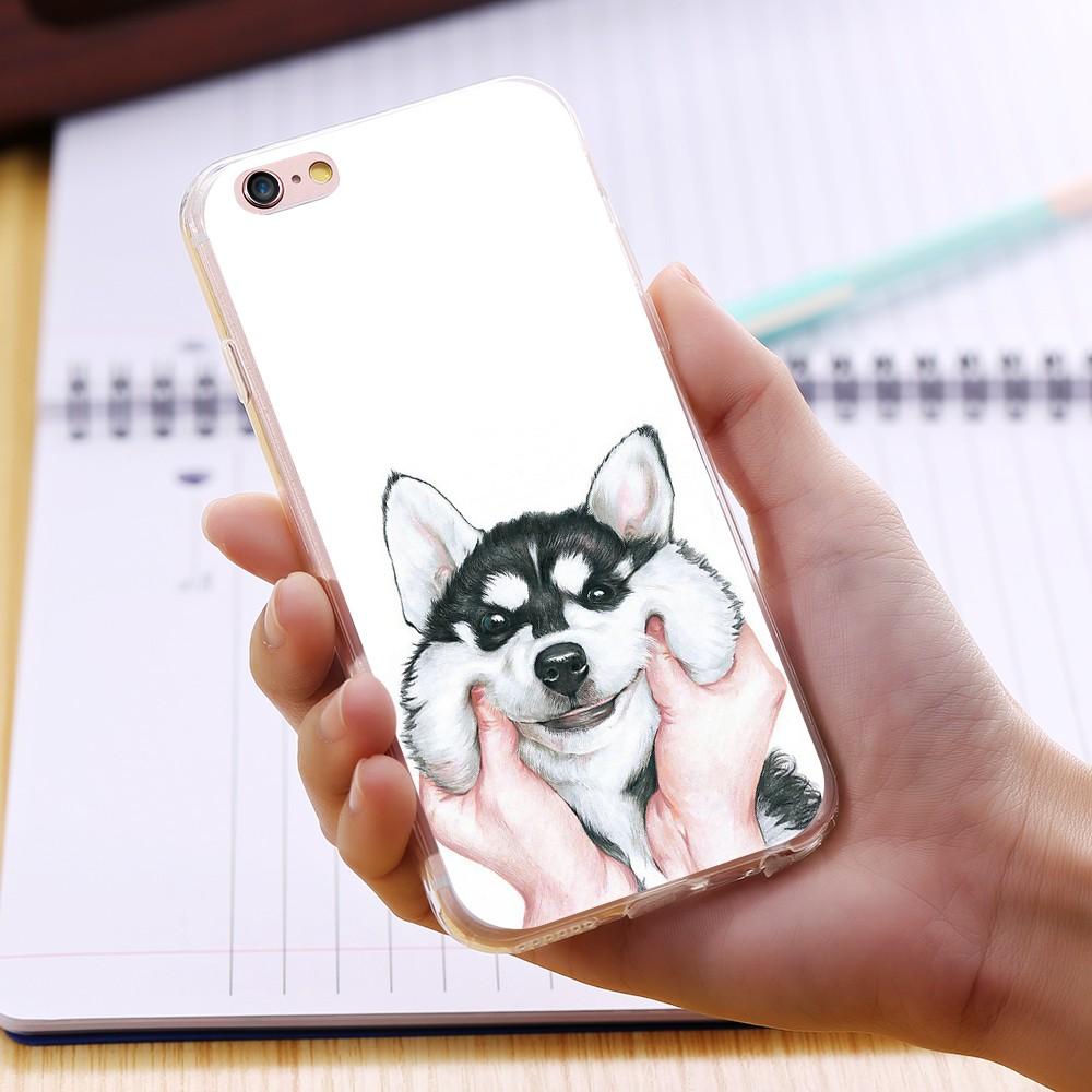 dog case  (9)