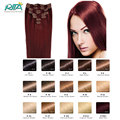 Clip In Human Hair Extensions  99J  Wine Red Brazilian Virgin Hair Clip In Extension Straight Full Head Human Hair Clips In