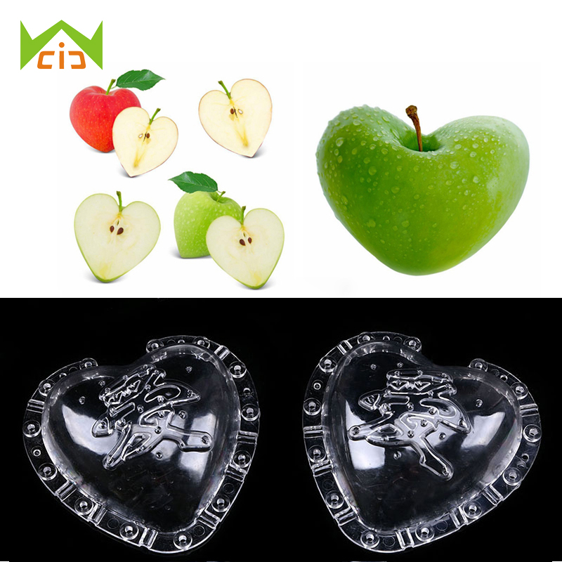 Shaping Mold Fruit Vegetable Star Heart Growth Forming Mould Garden Tools Decor