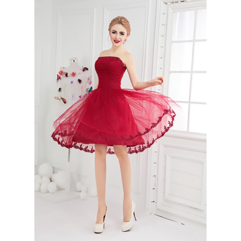 TS Couture Ball Gown Fit & Flare Bateau Neck Short / Mini Tulle ...