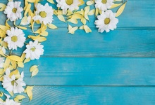 Laeacco Flower Wooden Board Blue Texture Scene Baby Photography Backgrounds Customized Photographic Backdrops For Photo Studio