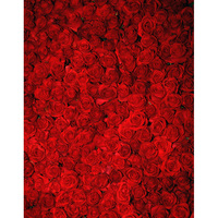 Custom vinyl cloth print 3 D red rose flowers photography backgrounds for wedding photo studio photographic backdrops S 2553