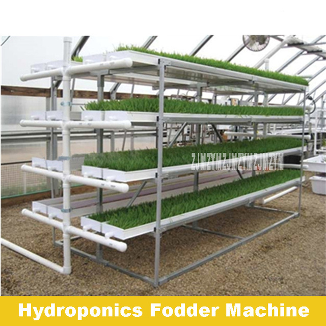 Good Quality High Output Micro FodderPro 4.0 Feed System Hydroponic Fodder Machine For Grass Planting 110V-220V 38W Hot Selling