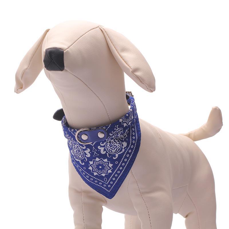 Enfriar Collar Para Perros Pequeños Productos Para Mascotas Ajustable Arneses Es