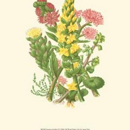 Summer Garden X Poster Print by Anne Pratt (10 x 13)