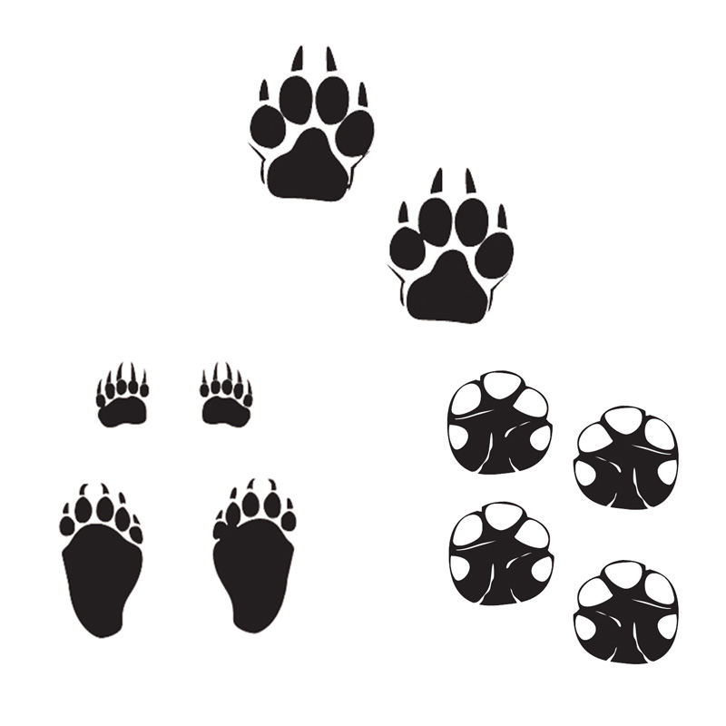 car styling animal footprints stickers dog bear elephant footprints