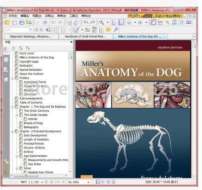 Millers Anatomy Of The Dog 4th Ed 00 In Books From Office