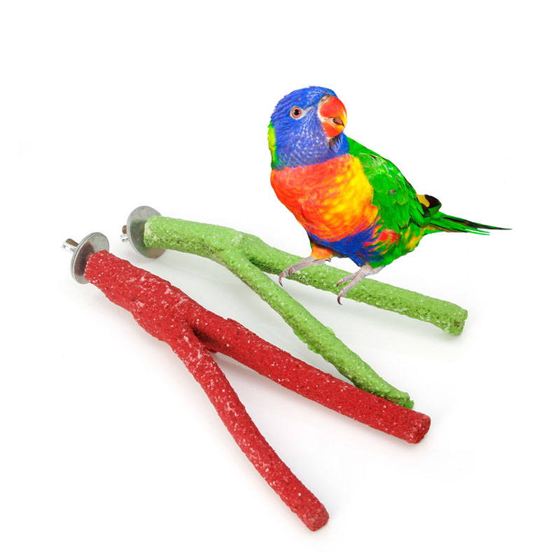 Bird Toys Reasonable Hoomall 1pc Stick Parrot Grinding Rod Bar Scrub Station Bar Vogel Speelgoed Bird Toy Red Parrot Grinding Rod Home Pet Tools Wide Selection;