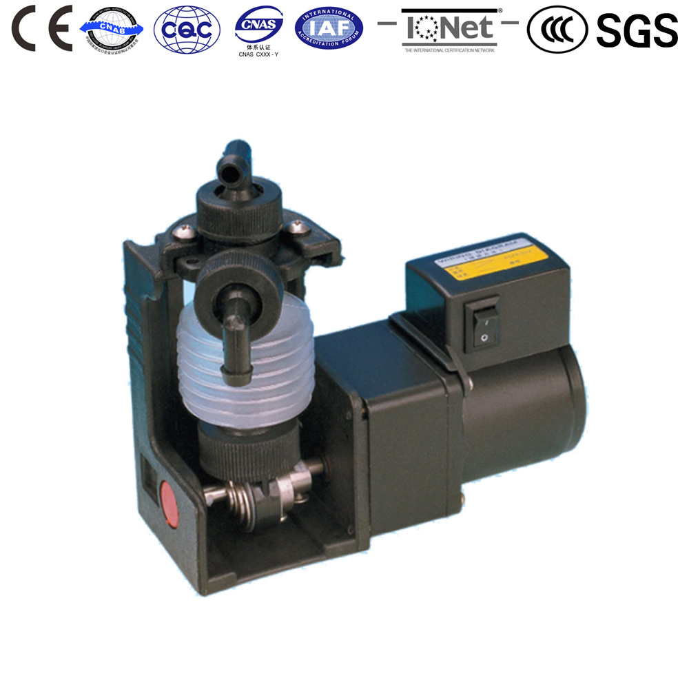 Chemical metering Water pump DS-1PU2 Dosing Bellow pumps Photo Developing Quantitative replenish of additive CE certificate