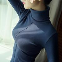 100 Cotton T Shirt Women Spring Autumn Long Sleeve Turtleneck Basic T Shirts Female Tops Plus
