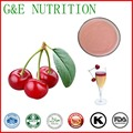cherry extract/dried cherry powder/natural acerola cherry extract 100g