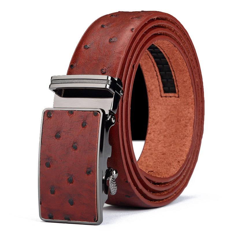 New Designer Men's Leather   Belts   Faux An ostrich Striped Strap Male Metal Automatic Buckles   Belt   Mens n41