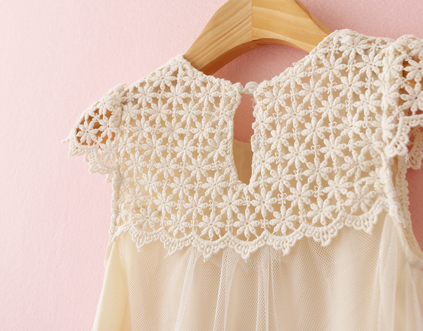 Lollas Lace Embroidered Dress Cutout Dress Summer Children Hollow-out The Dress With Short Sleeves