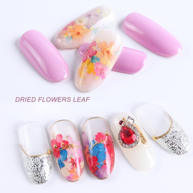 Dried Flowers Nail Art Decoration Natural Dry Floral Leaf DIY Sticker Beauty Jewelry Tips Colorful Nail Gel Ornaments 01 (7)
